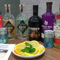 Gin Tasting Gin _ Mixer Selection-min